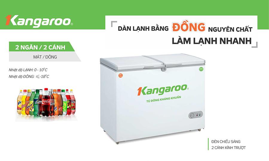 Tủ đông kháng khuẩn KG566C2