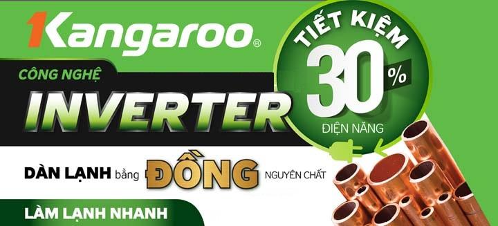 Tủ đông kháng khuẩn Kangaroo KG295C1